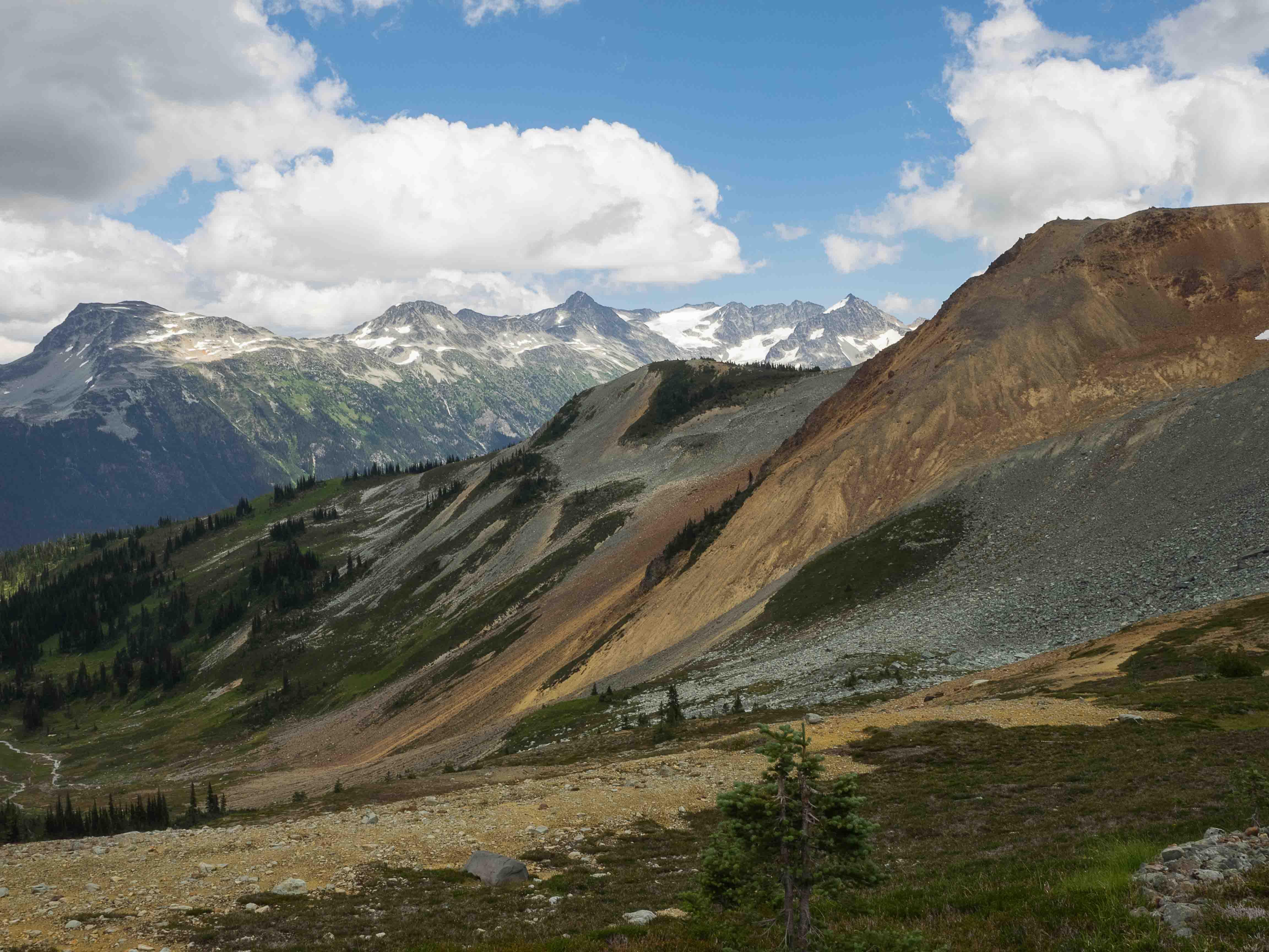 Whistler et la montagne
