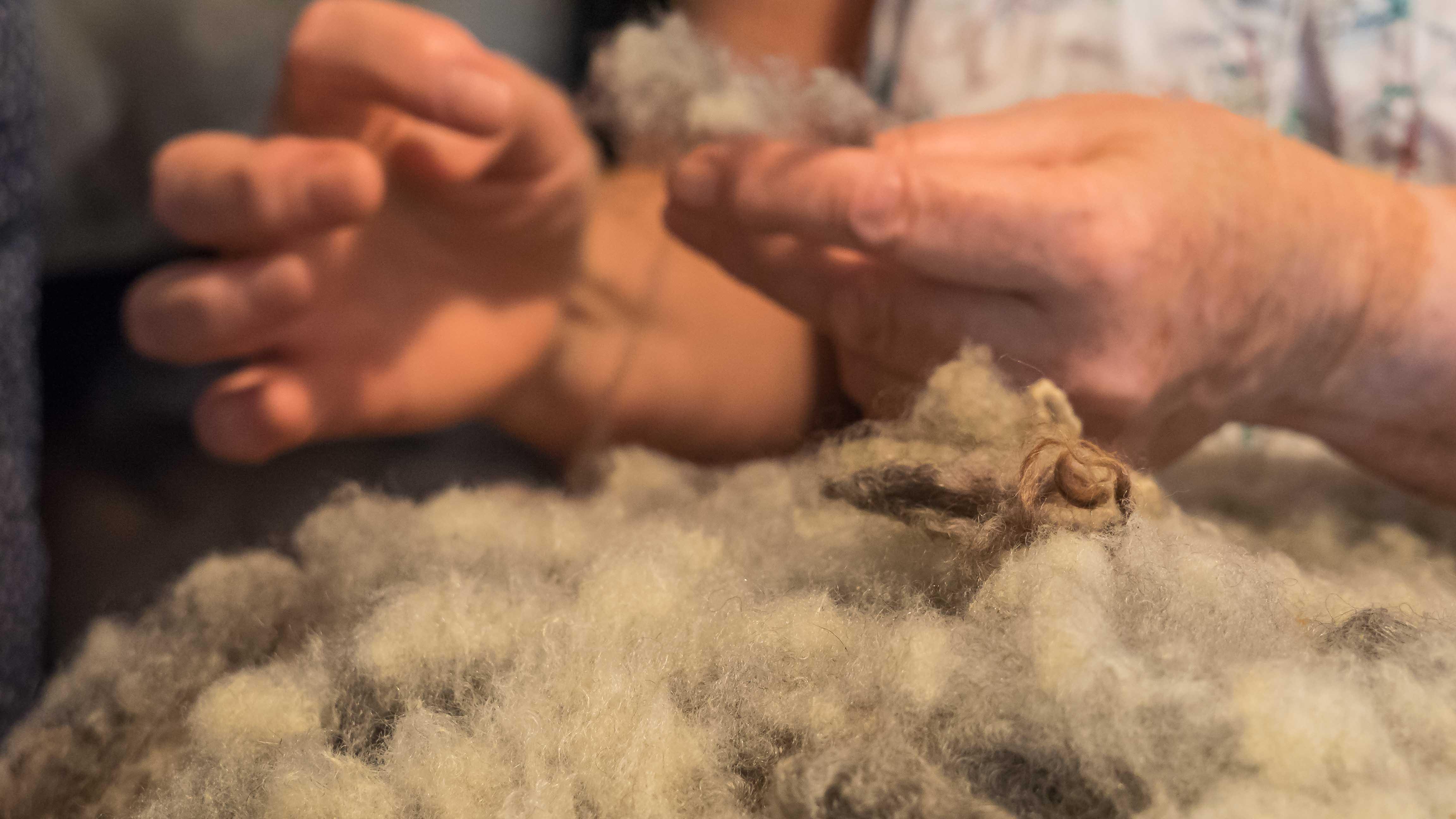 Margaret, une vie dans la laine