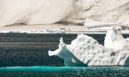Marche forcée vers Iceberg Lake
