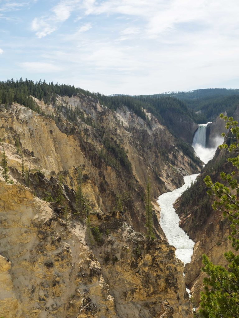 Grand Canyon du Yellowstone (Yellowstone NP)