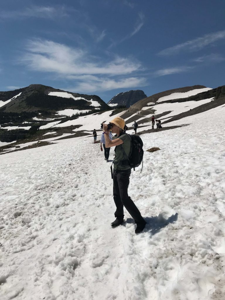 En chemin vers le Hidden Lake (Logan Pass, Glacier NP)