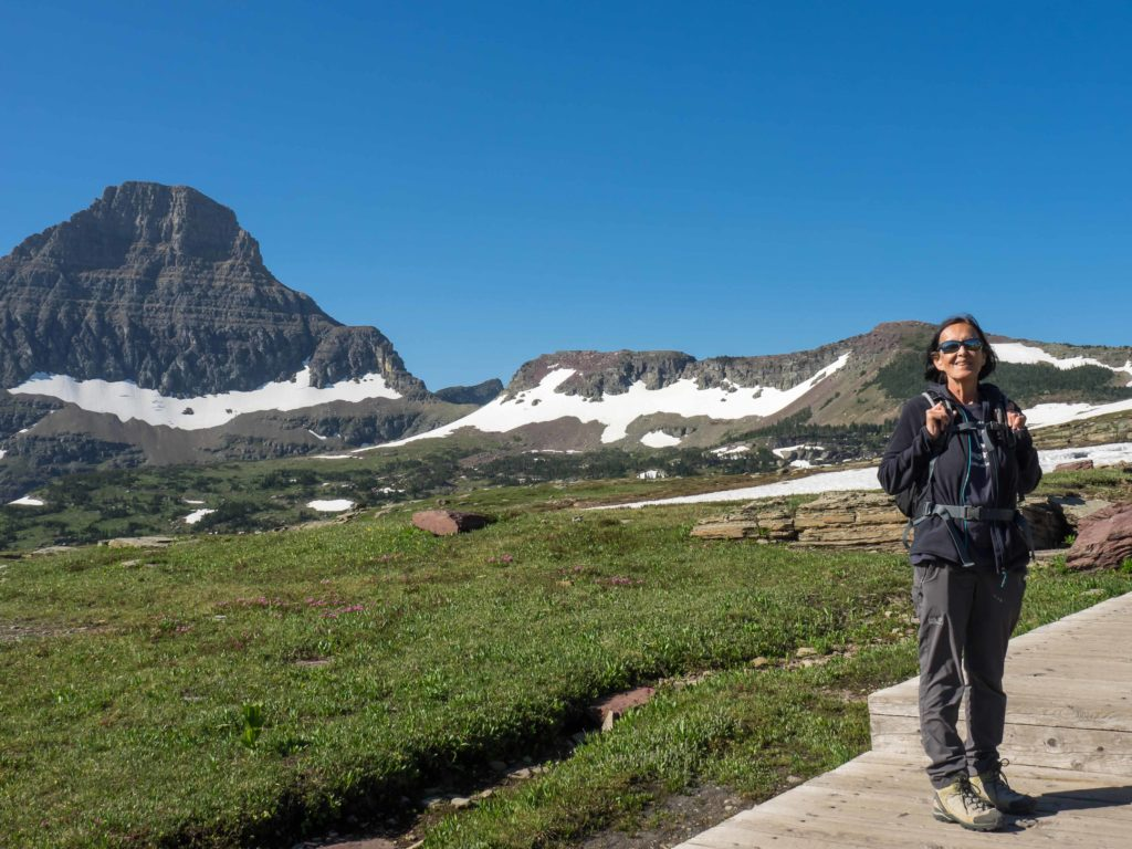 Reynolds Mountain près du Logan Pass (Glacier NP)