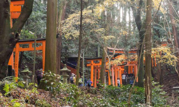 Escapades dans les alentours de Kyoto