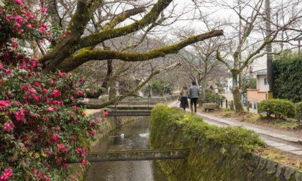 Promenades à Kyoto