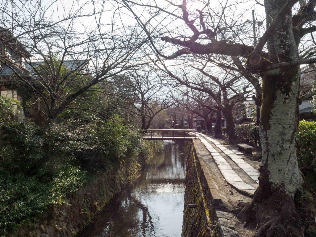 Chemin de la Philosophie (Kyoto)