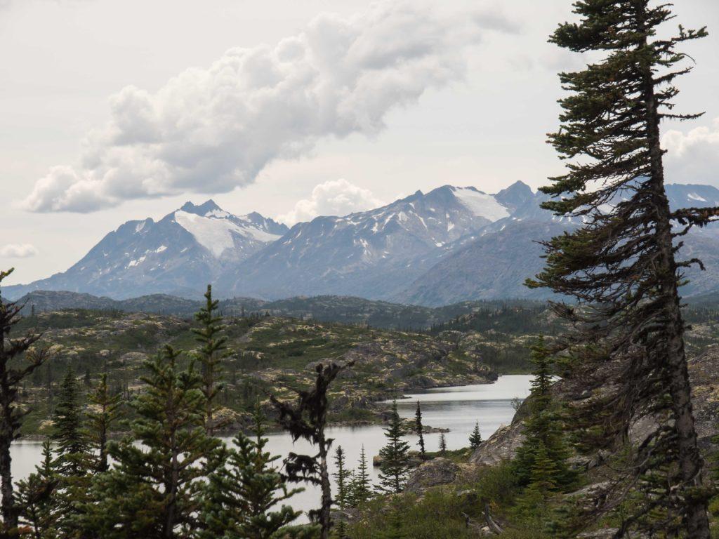 En approchant le White Pass, près de la frontière Canada-USA