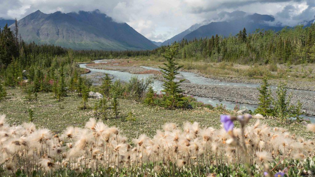 Vue de la Haines Road (Yukon)